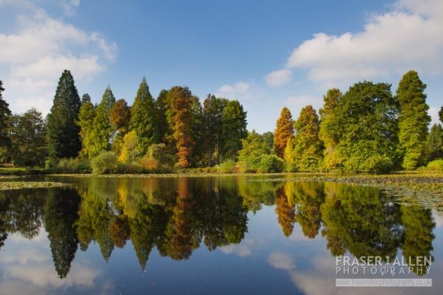 Bedgebury Autumn